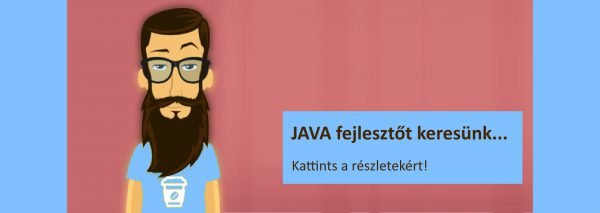 ERP rendszer JAVA fejlesztő állás Budapest
